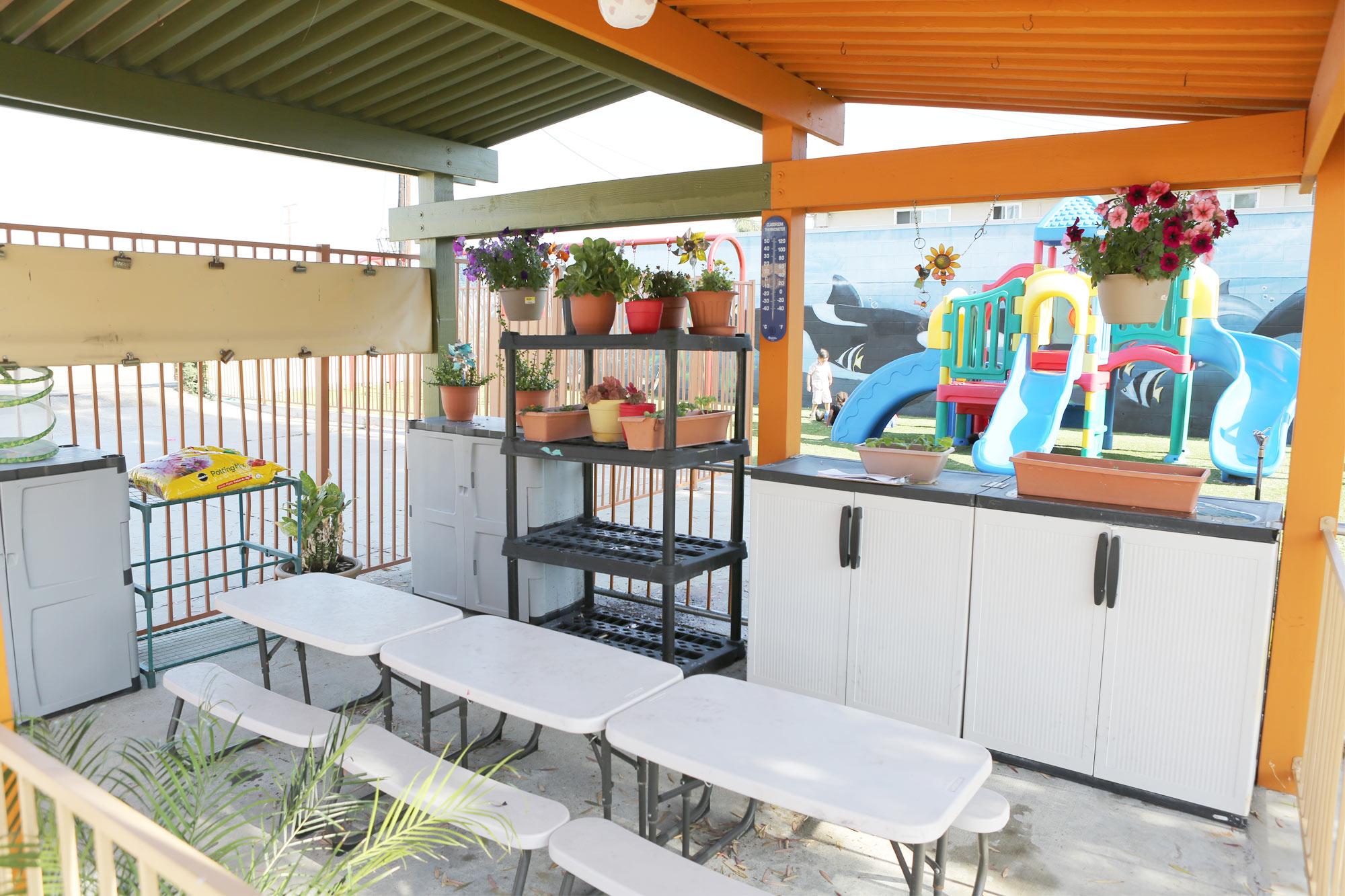 Pasadena-Preschool-outdoor-science